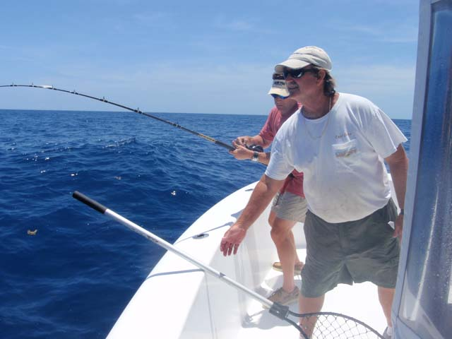 Hot and heavy fishing while deep sea fishing aboard the Goin Off out of Port Canaveral near Cocoa Beach