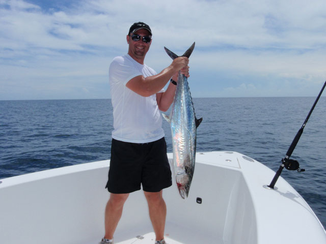 Kingfish caught aboard the Goin Off out of Port Canaveral near Cocoa Beach.